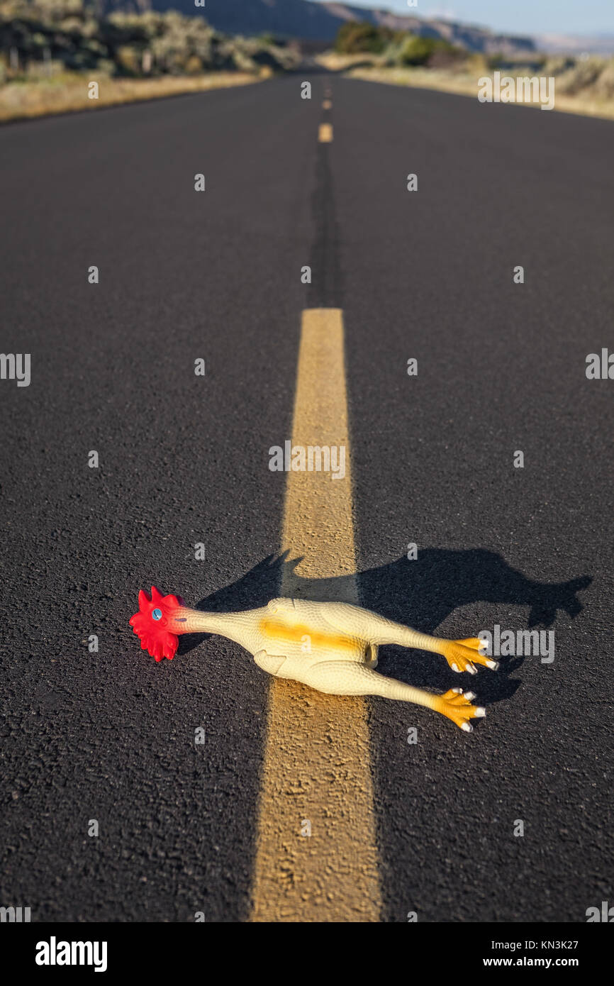 Gag rubber chicken crossing the road, Rufus, Oregon. - Stock Image
