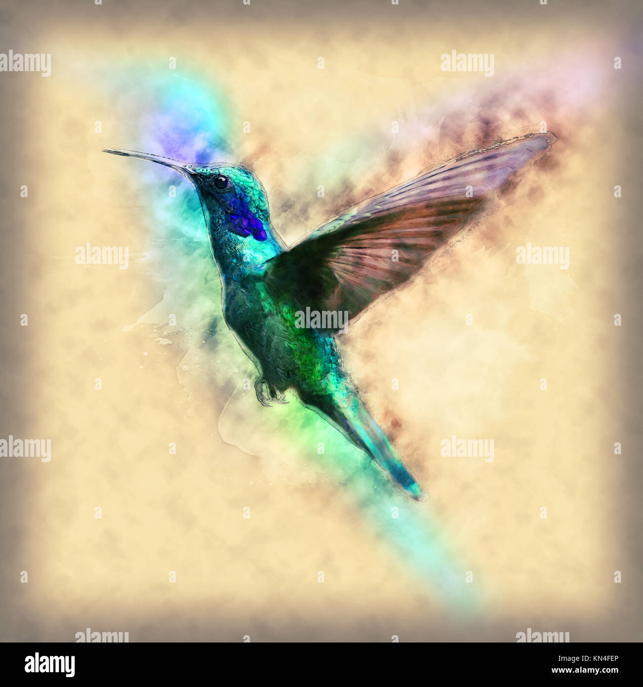 Digitally enhanced image a hovering hummingbird - Stock Image