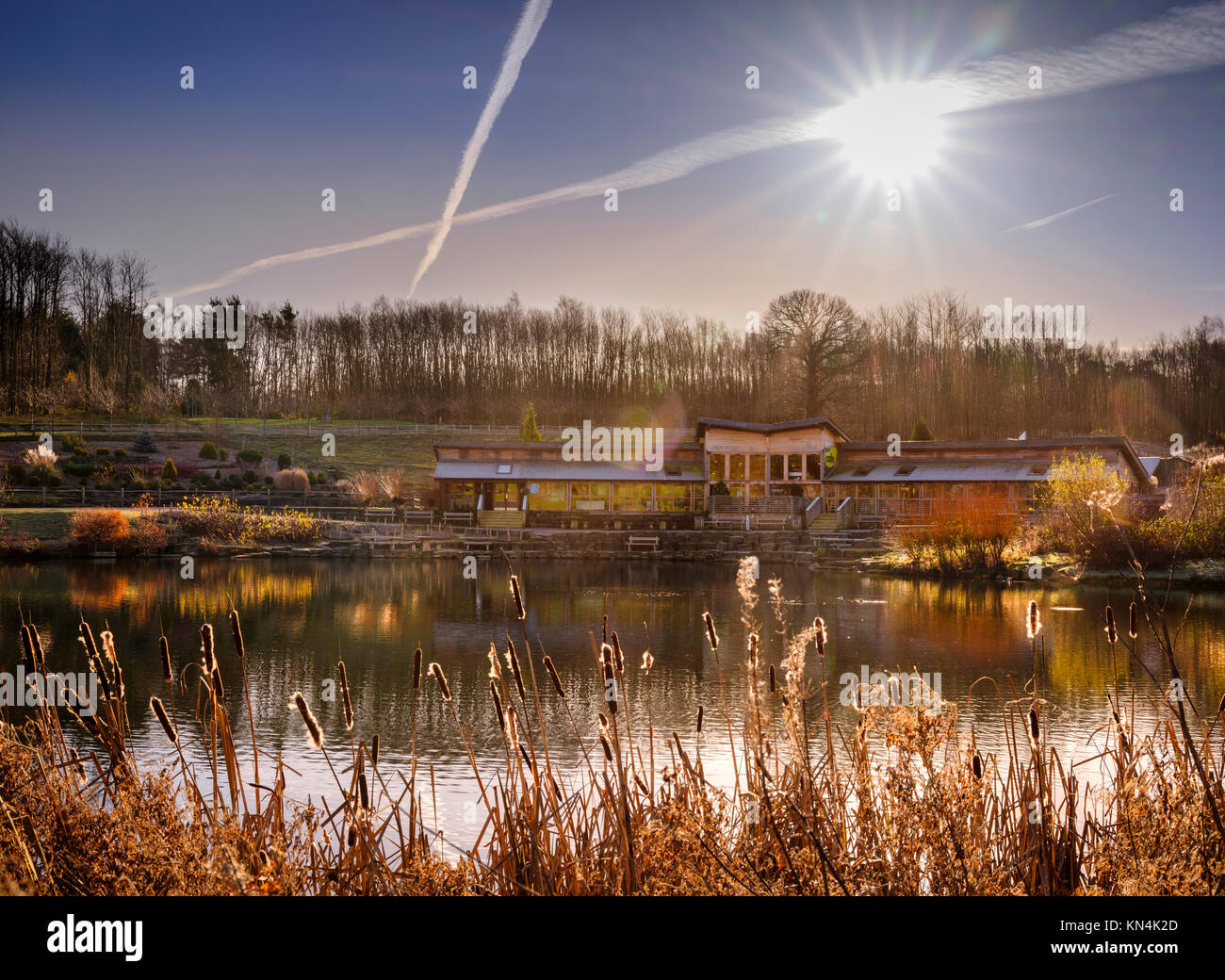 The cafe and visitors centre at the Bedgebury National Pinetum and Forest in on the Sussex, Kent border. - Stock Image