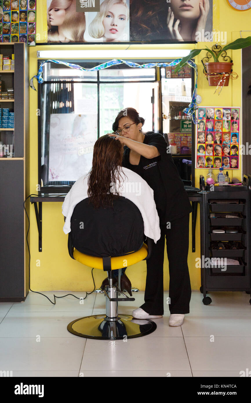 Hairdresser at work in a hairdressing salon, Quito, Ecuador South America - Stock Image
