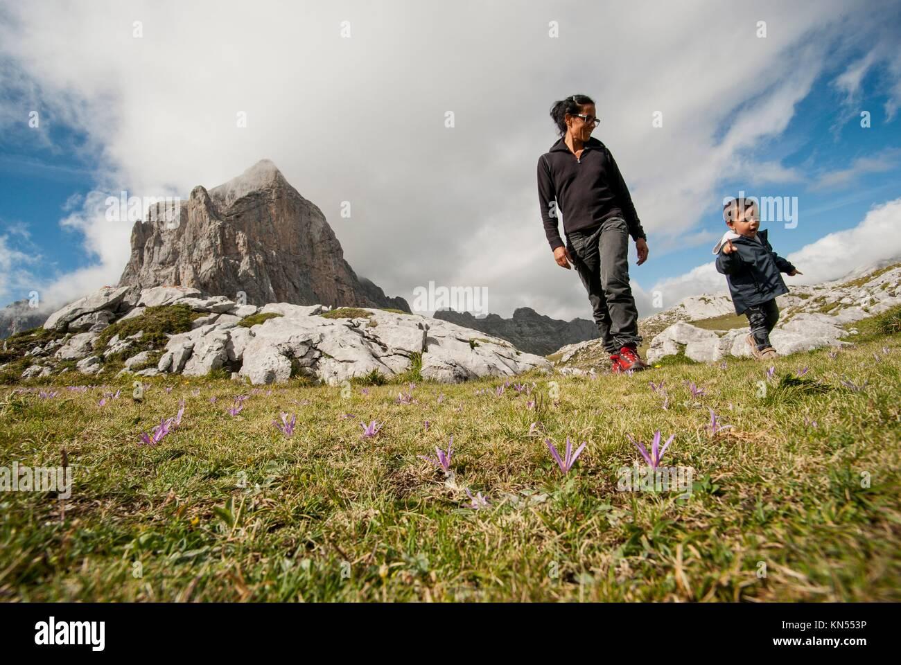 Fuente Dé. National Park Picos de Europa. Cantabria. Spain. - Stock Image