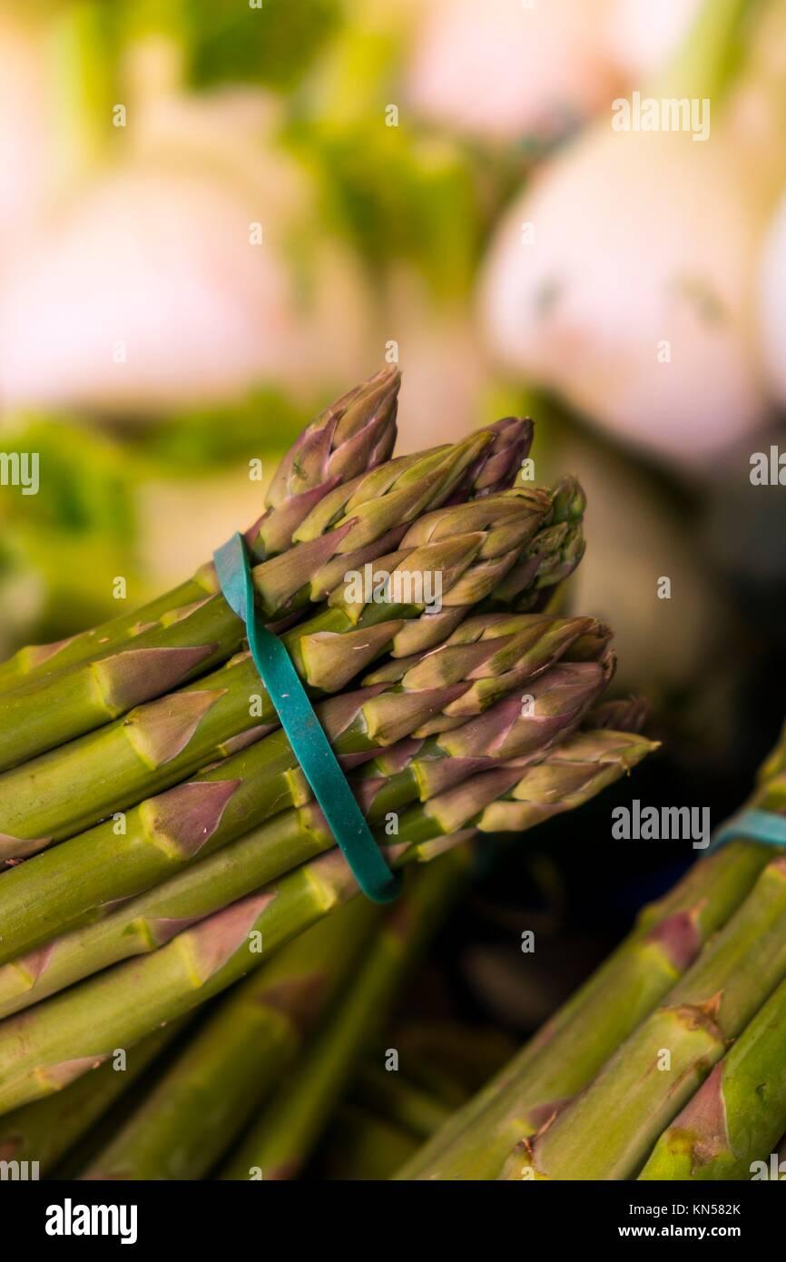 Asparagus, a bunch of fresh asparagus in a market of Venice, Italy. Stock Photo