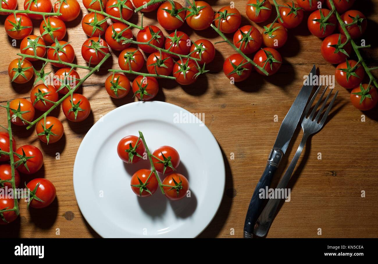 Trusses of tomatoes. - Stock Image