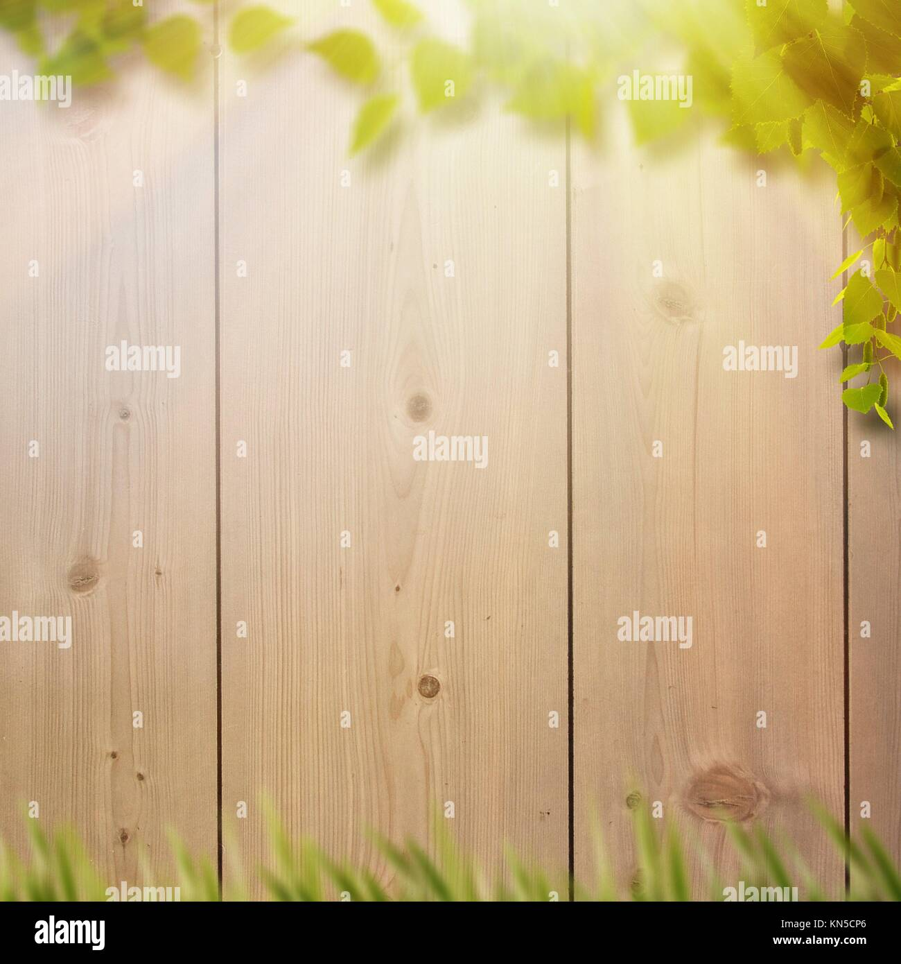 Abstract natural backgrounds with summer foliage, farm fence and bright sunlight. - Stock Image