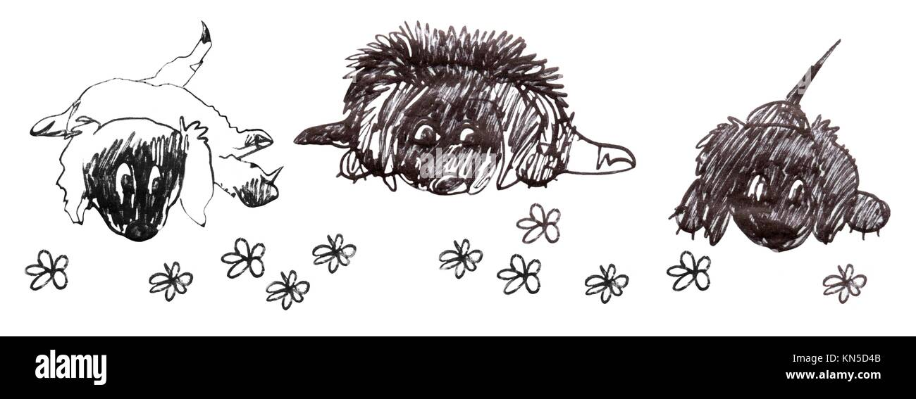 Three dogs, down on the floor, waiting. Cartoon sketch in black and white. - Stock Image
