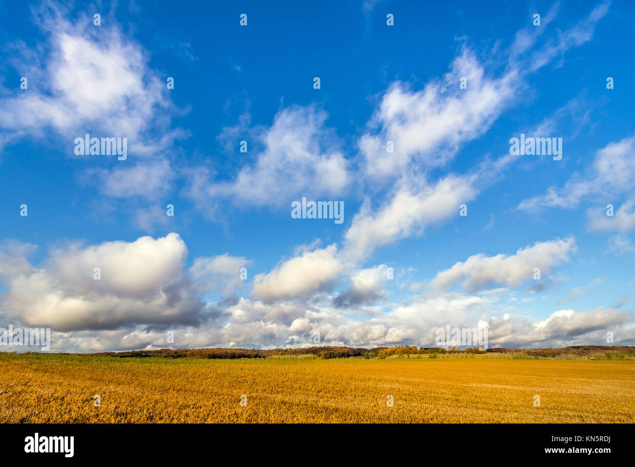Cumulus rainclouds approaching over farmland - France. - Stock Image
