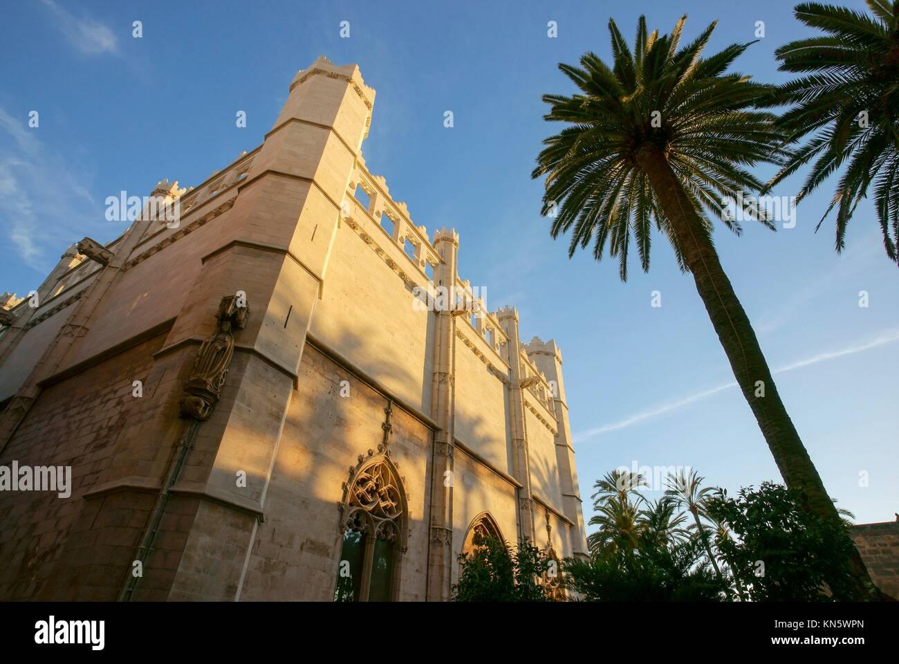 The Llotja, XV century. Palma. Mallorca. Balearic Islands. Spain. Stock Photo