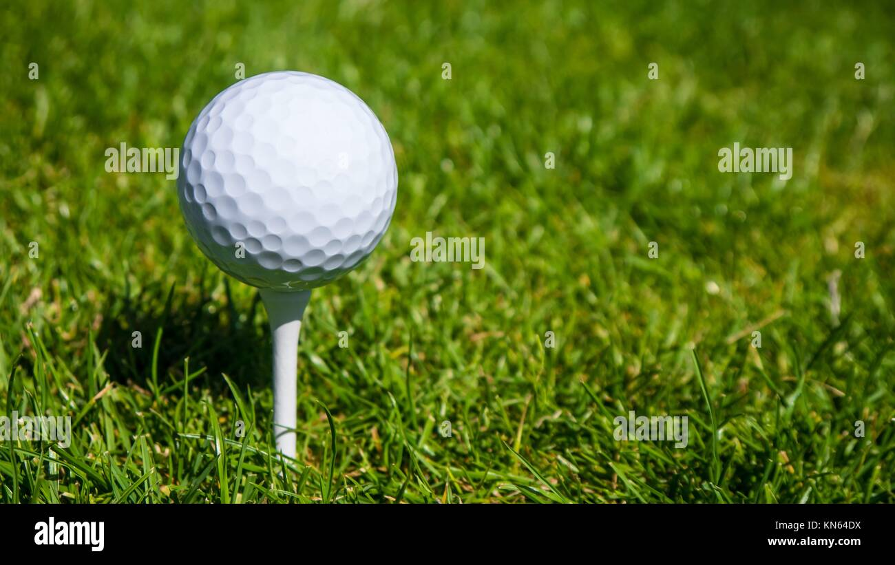 golf ball and green meadow in summer time. - Stock Image