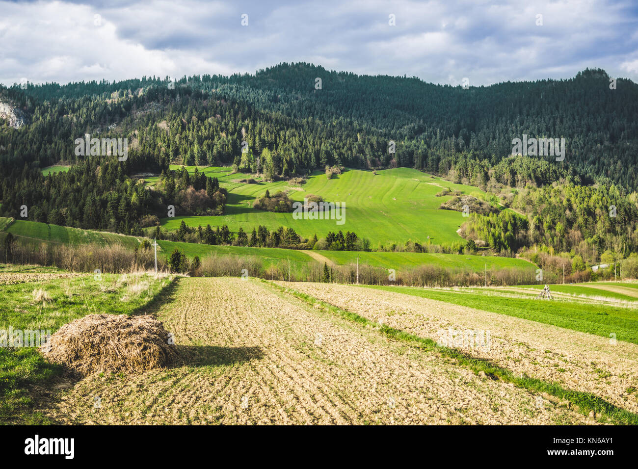 Green spring hills in the Pieniny mountains in Poland with hay in the rural setting - Stock Image