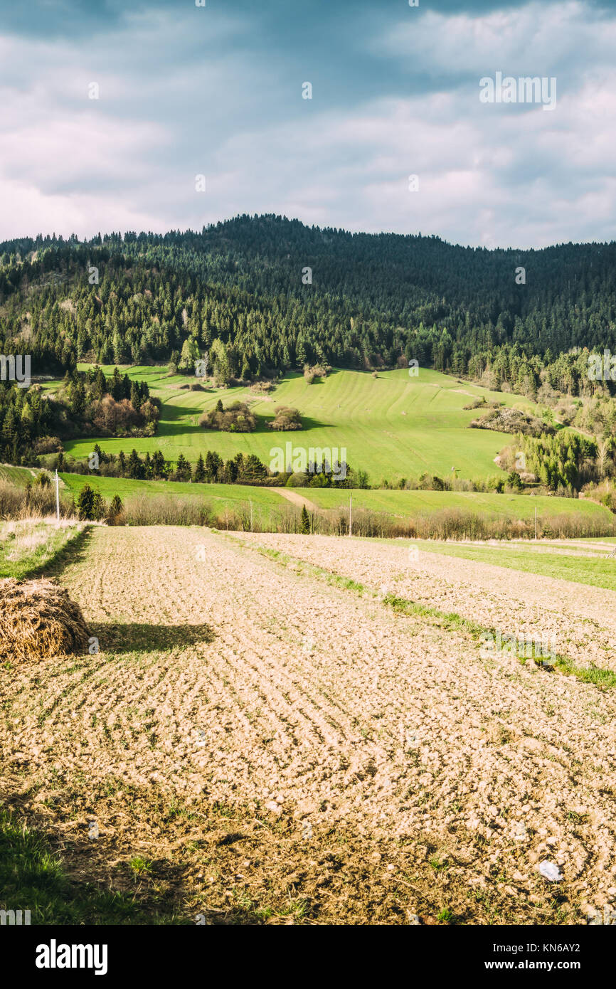 Landscape in the Pieniny region in Poland with green hills, agricultural farm field in sunlight - Stock Image