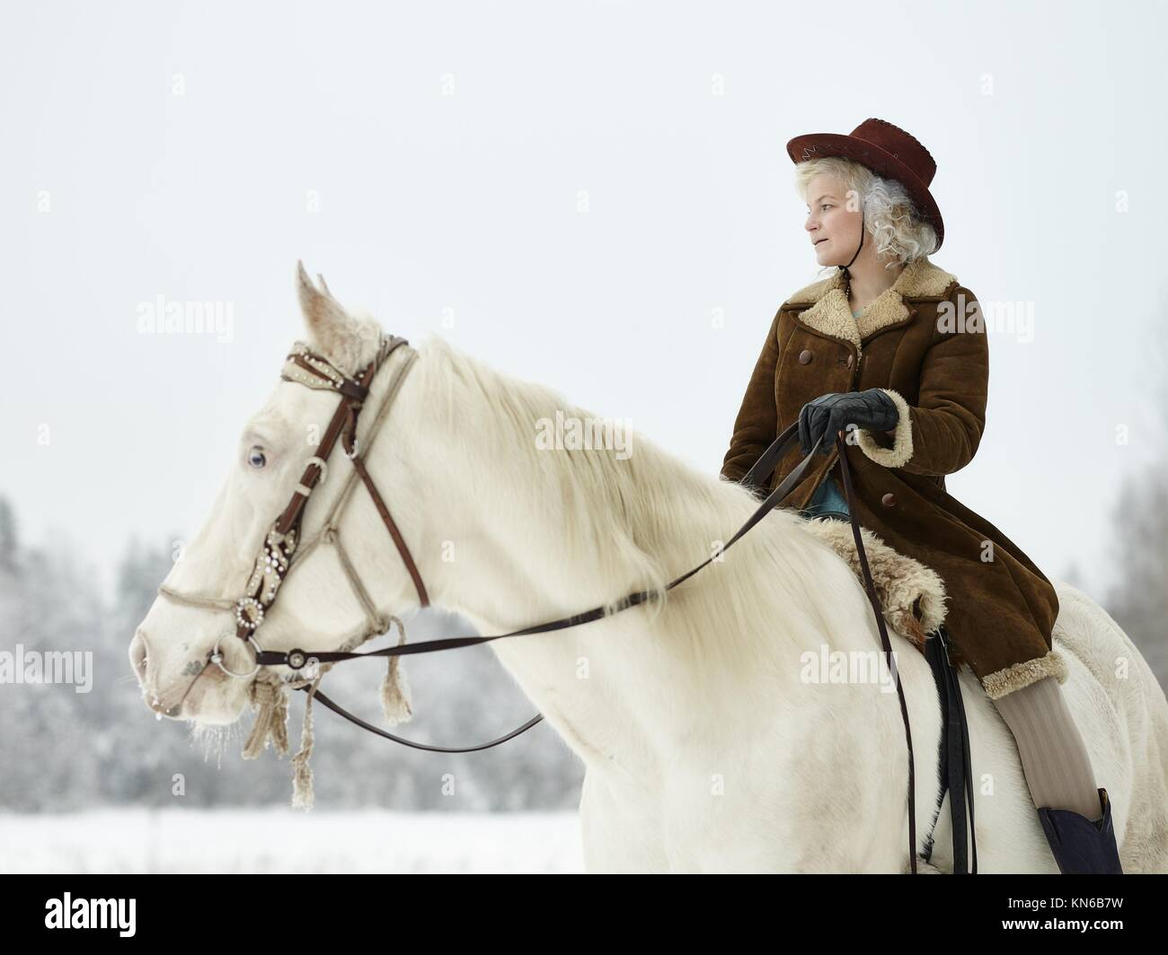 Attractive woman wearing winter jacket and hat, she riding a white horse. South Finland in February. Stock Photo