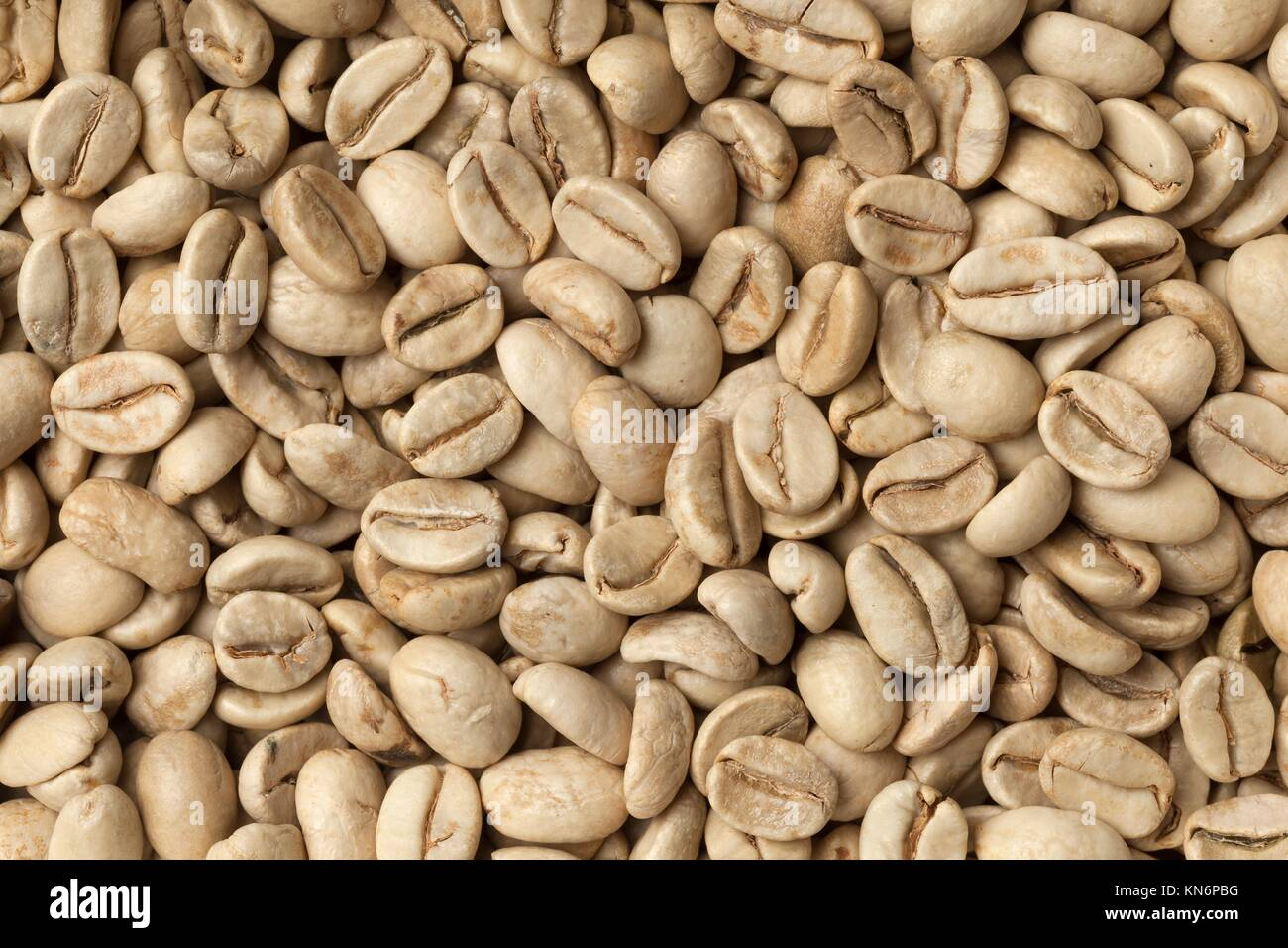 Unroasted Coffee Beans >> Malabar Green Unroasted Coffee Beans From India Full Frame