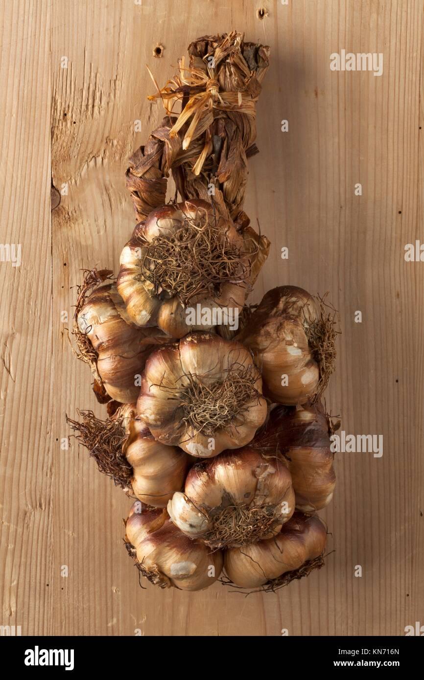 Smoked garlic braid hanging on wood. - Stock Image