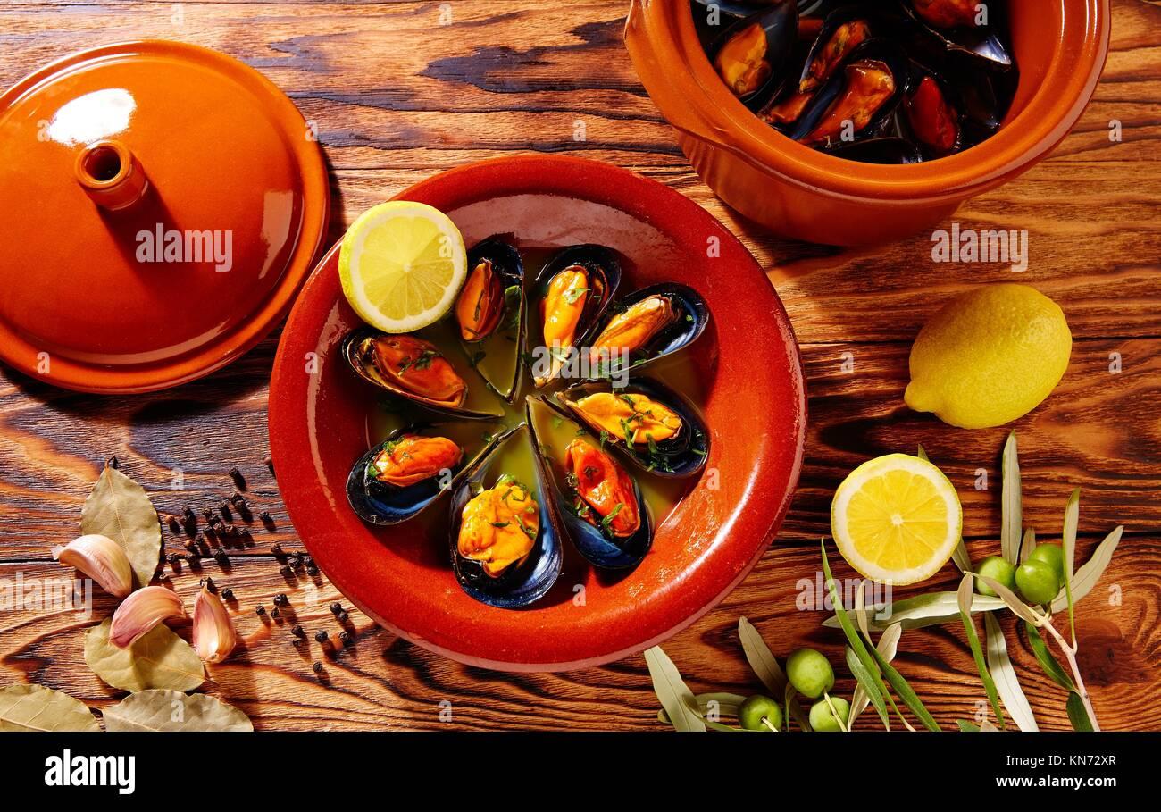 Tapas mejillones al vapor steamed mussels from Spain. - Stock Image