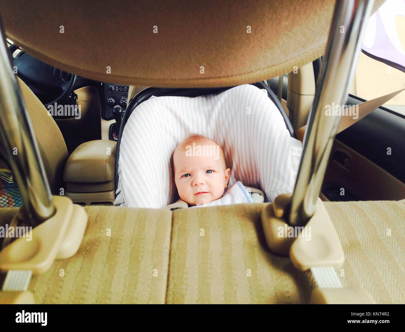 4 months old baby boy in a safety car seat. Picture taken from headrest. - Stock Image