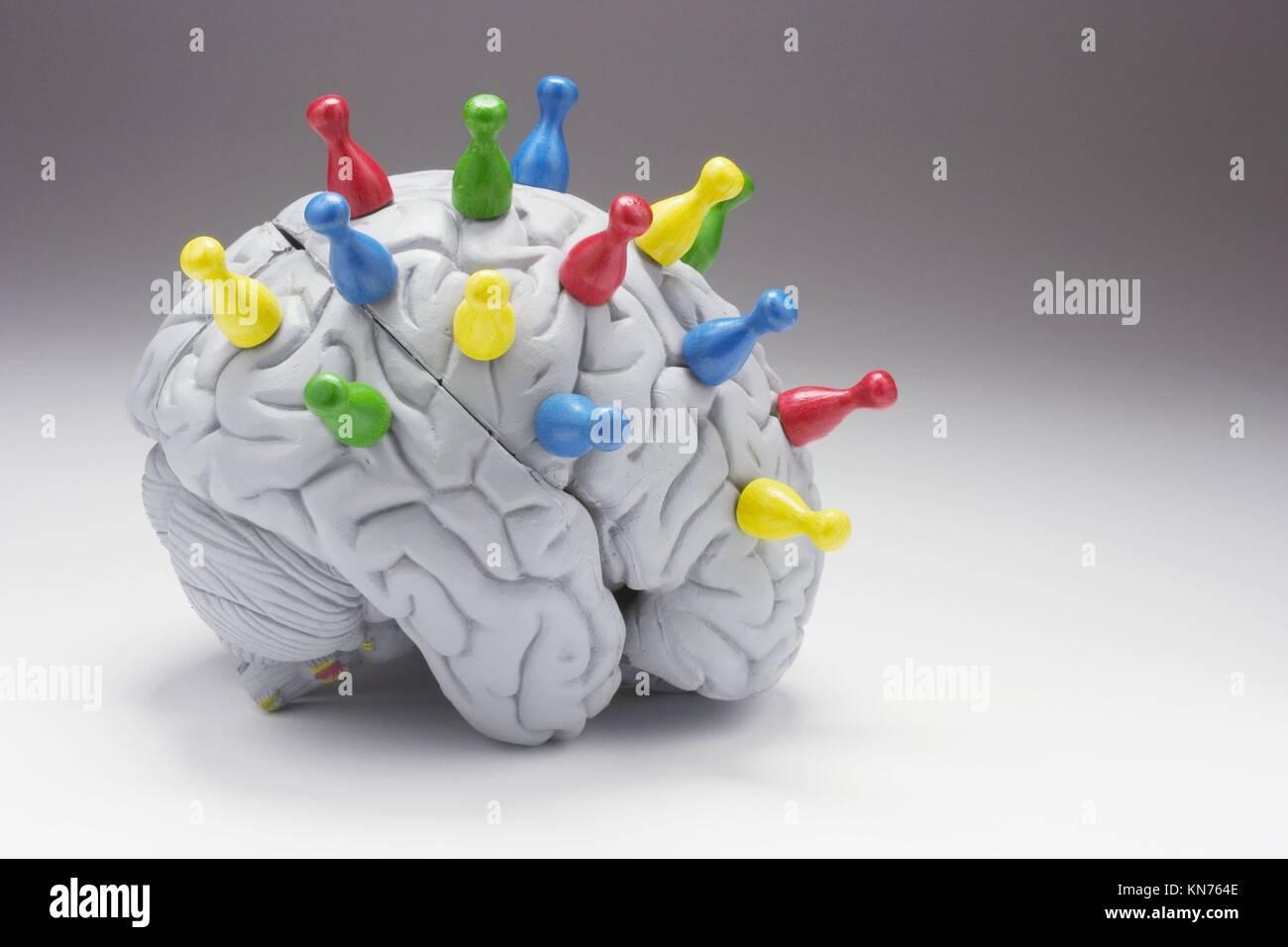 Game Pieces on Anatomy Model of Human Brain Stock Photo: 167959582 ...