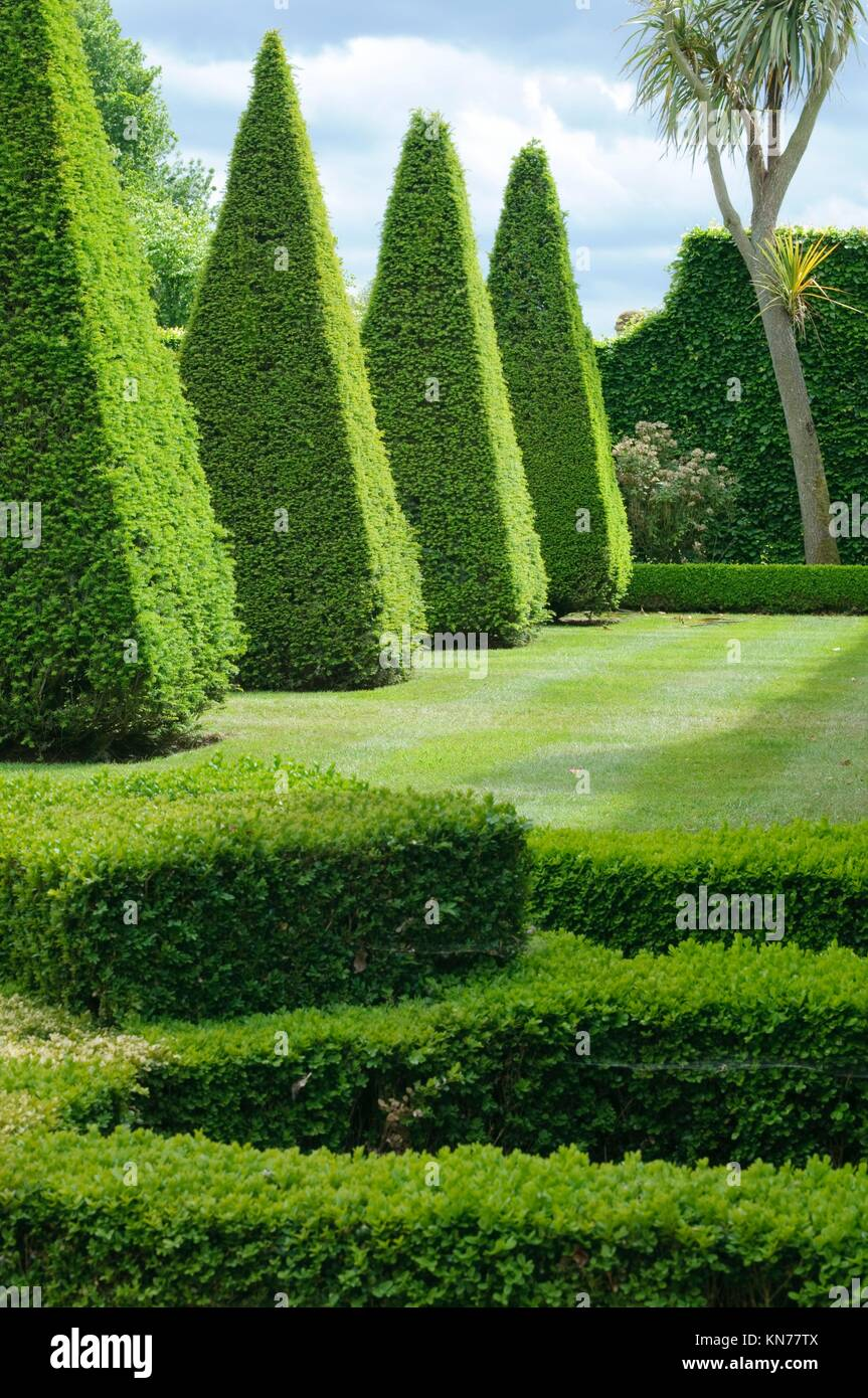 English boxwood garden design, Norfolk, England Stock Photo ... on