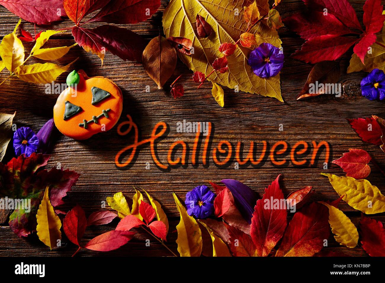 Halloween Written Word In Pumpkin Fall Background With