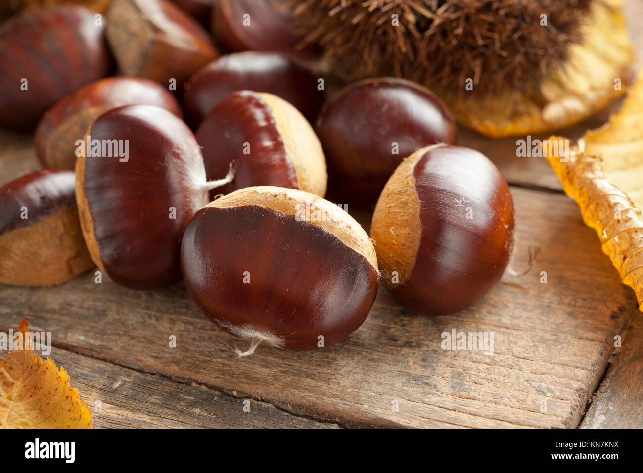 Heap of whole raw sweet chestnuts. - Stock Image