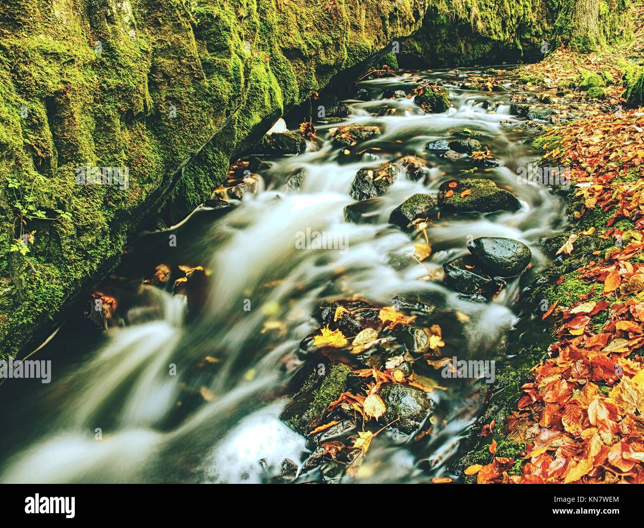 Weir in mountain stream. Colorful leaves  on stones in cold dark water. Shinning bubbles create bright trails on - Stock Image