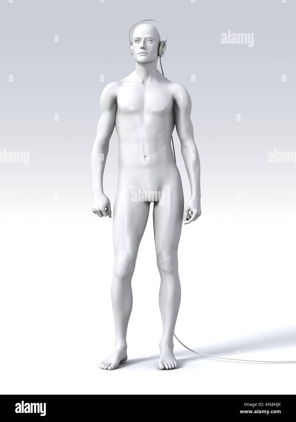 3d Digital Render Male Anatomy Stock Photos & 3d Digital Render Male ...