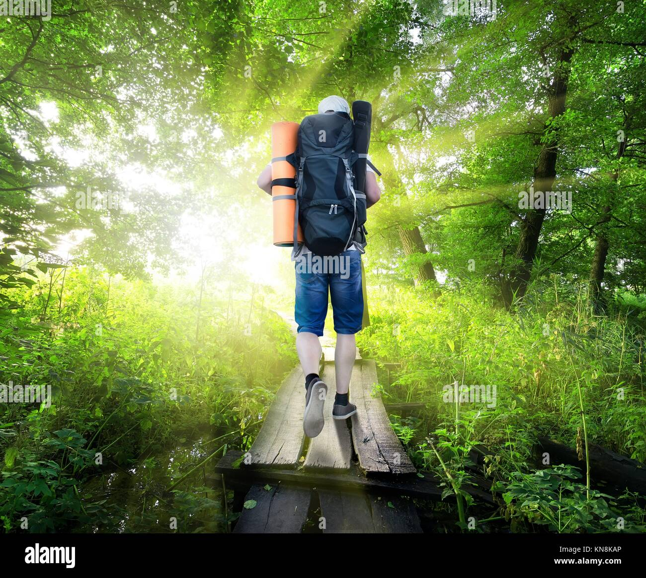 Traveller on a small bridge in green forest. - Stock Image