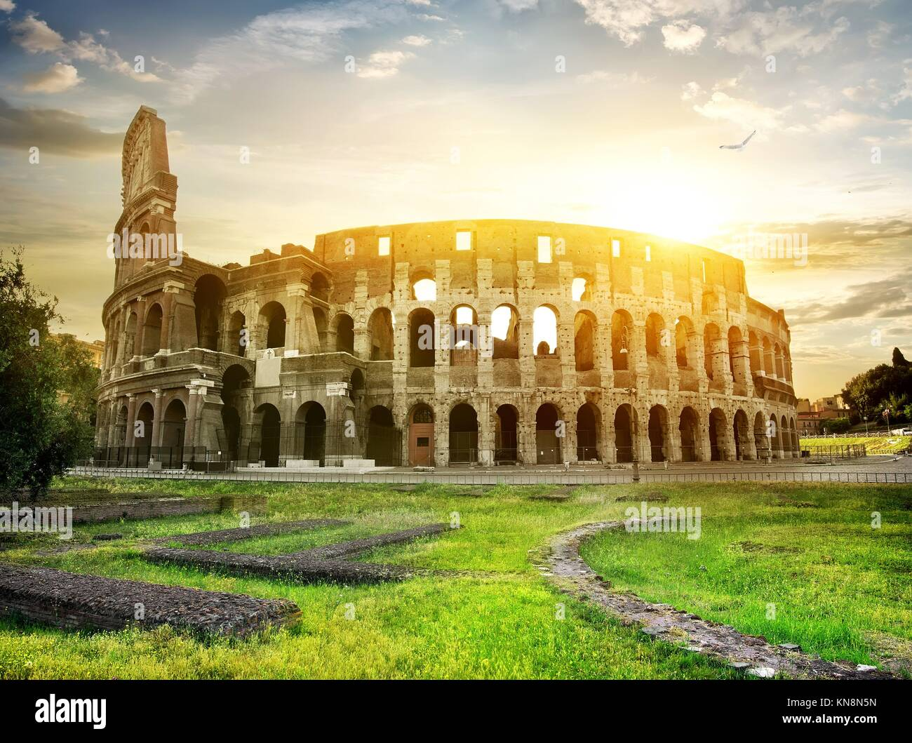 Bird over Colosseum and beautiful yellow sunset. - Stock Image
