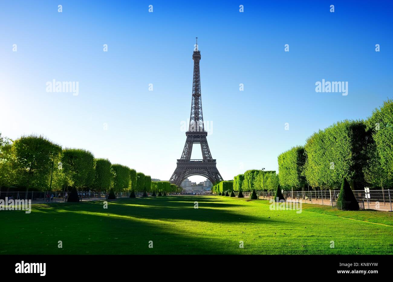 Eiffel Tower view from Champ de Mars in Paris, France. - Stock Image