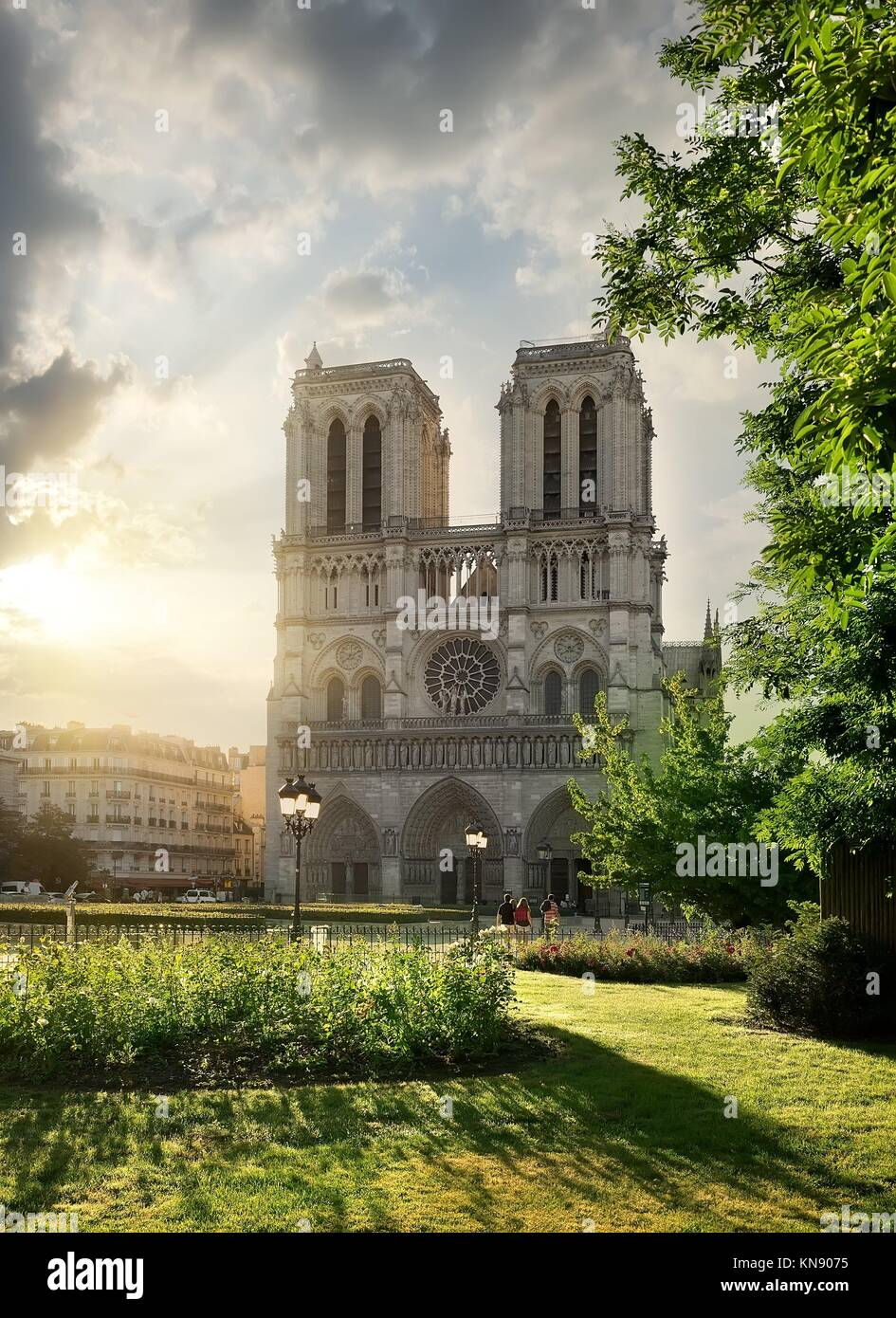 Notre Dame de Paris and green meadow at sunrise, France. - Stock Image