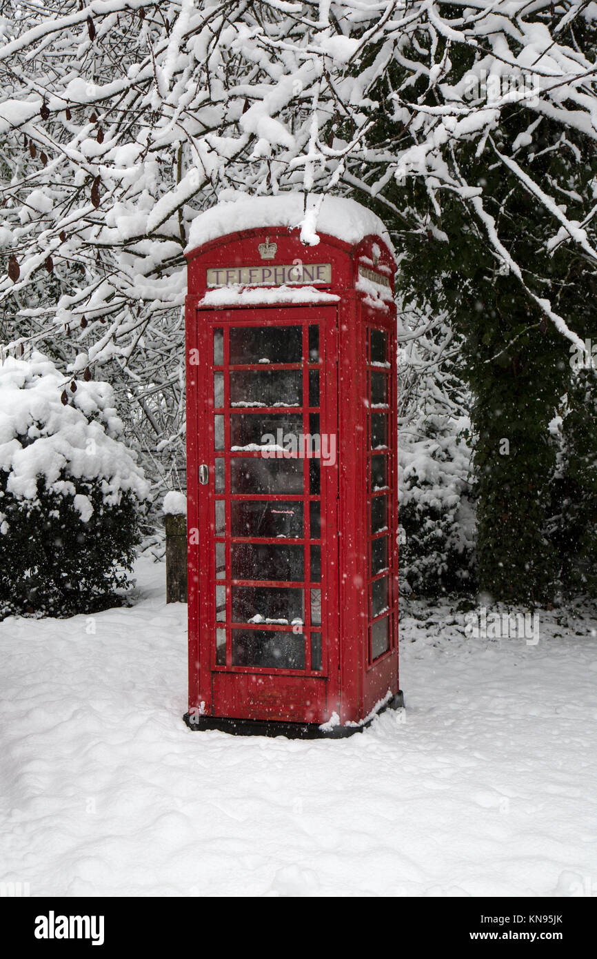 A red British telephone box covered in snow in winter, with snow covered tree behind. - Stock Image