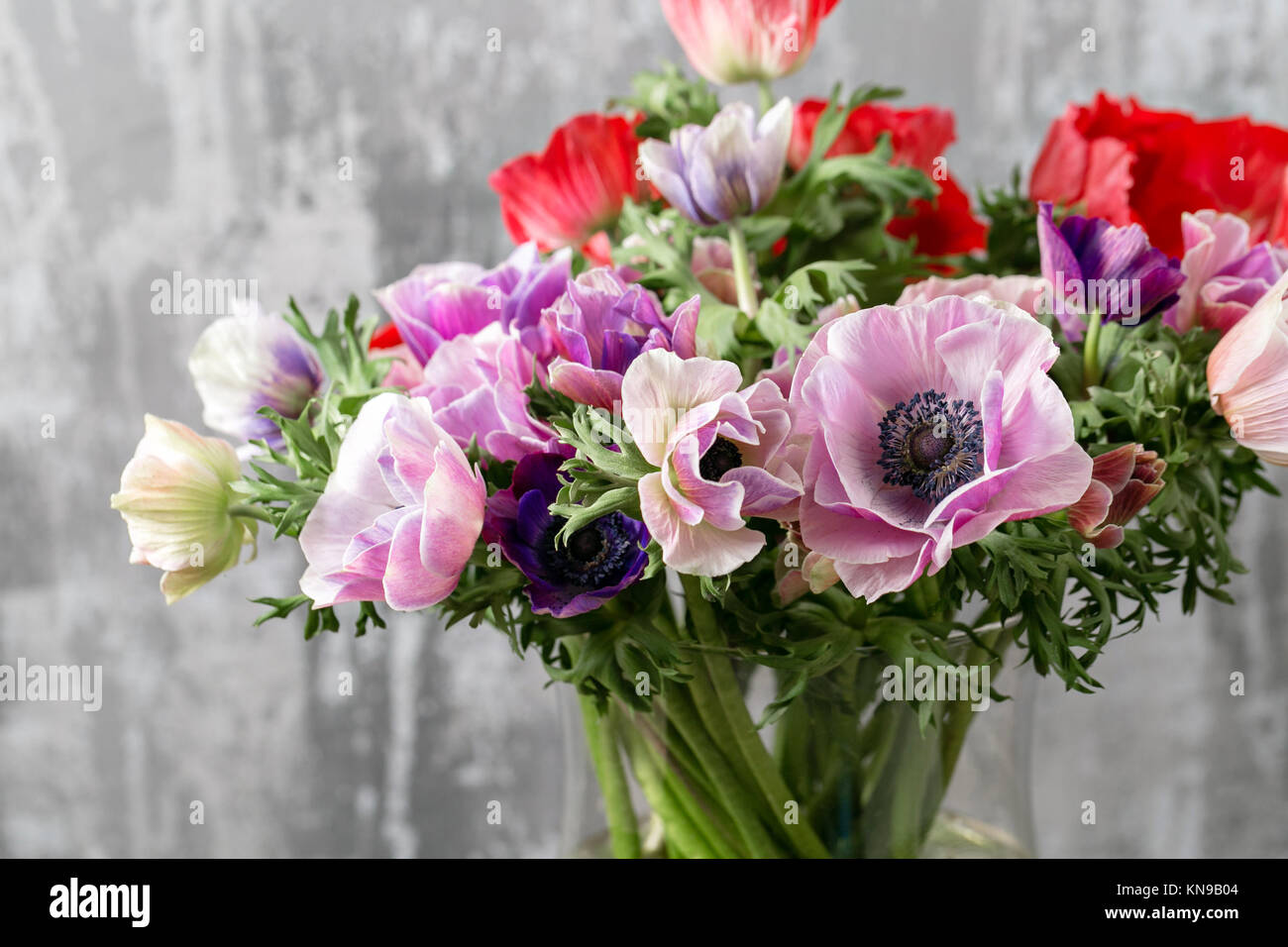 bouquet of mixed anemones flowers in vase . the work of the florist ...
