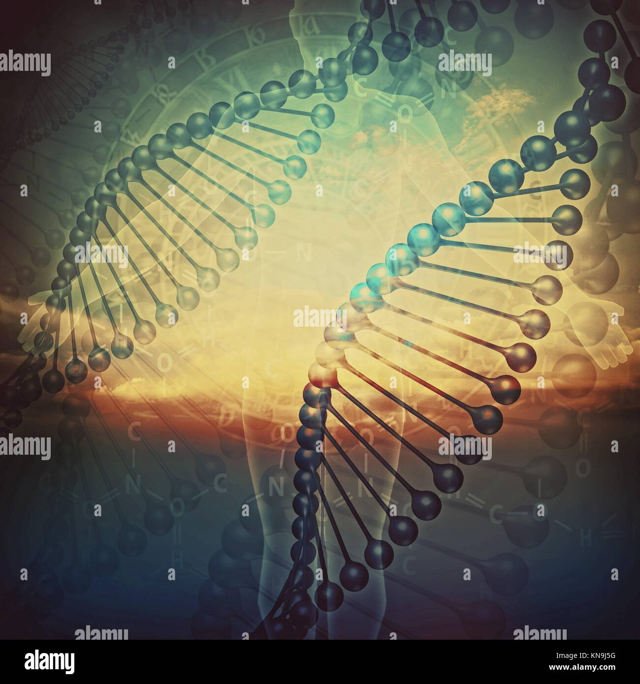 Biology. Abstract education and science backgrounds with human DNA. - Stock Image