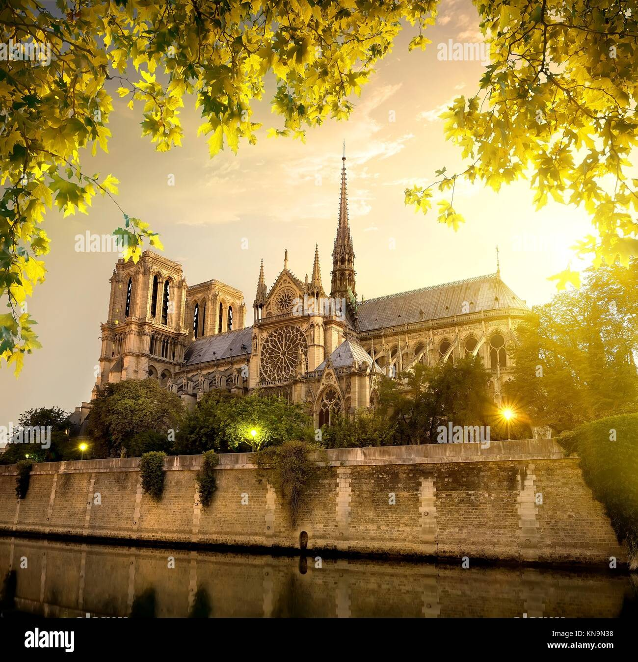 Notre Dame in Paris at sunset, France. - Stock Image