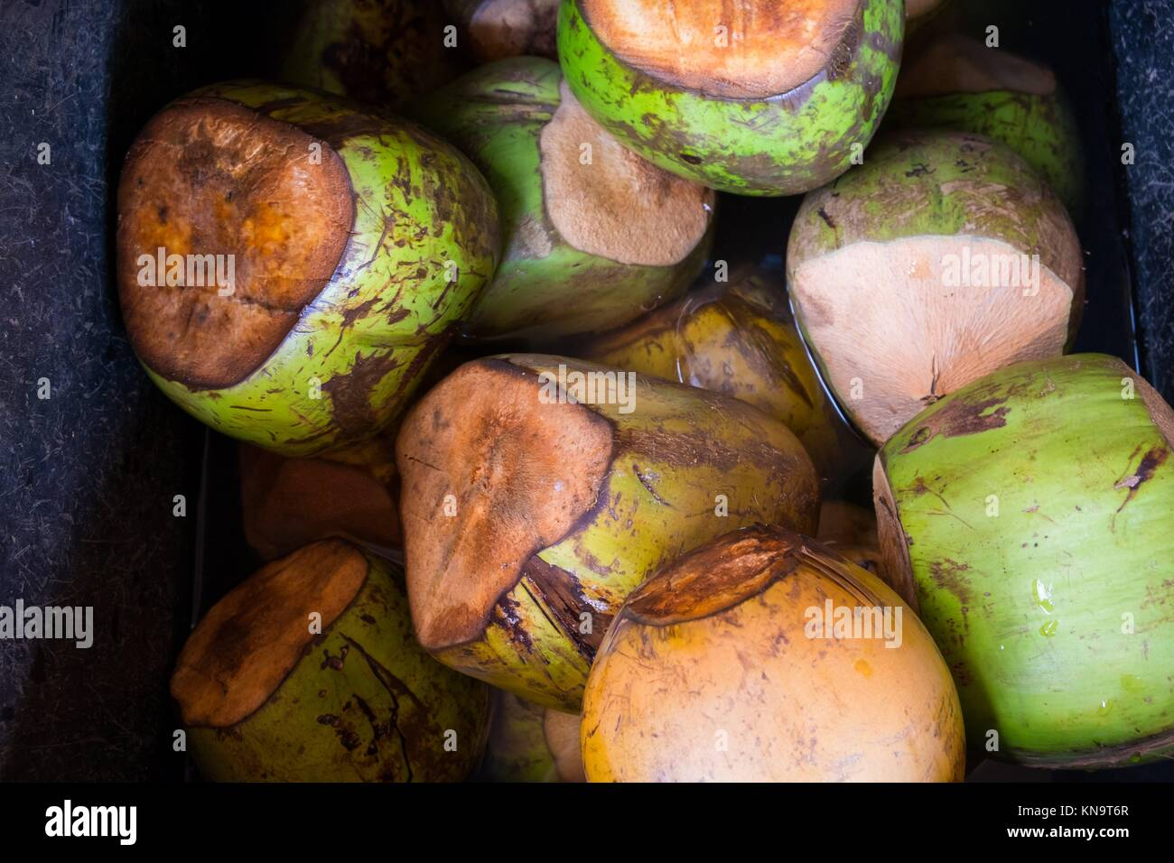 Farmer's market on the North Shore of Oahu Hawaii with ice cold coconuts for sale. Stock Photo