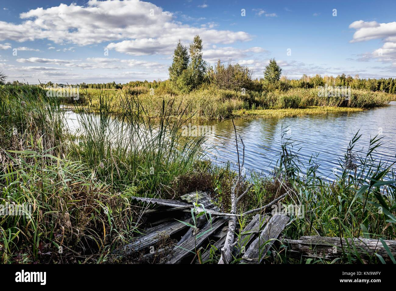 "Lake near """"Emerald"""" recreation base in Chernobyl Nuclear Power Plant Zone of Alienation around nuclear reactor Stock Photo"