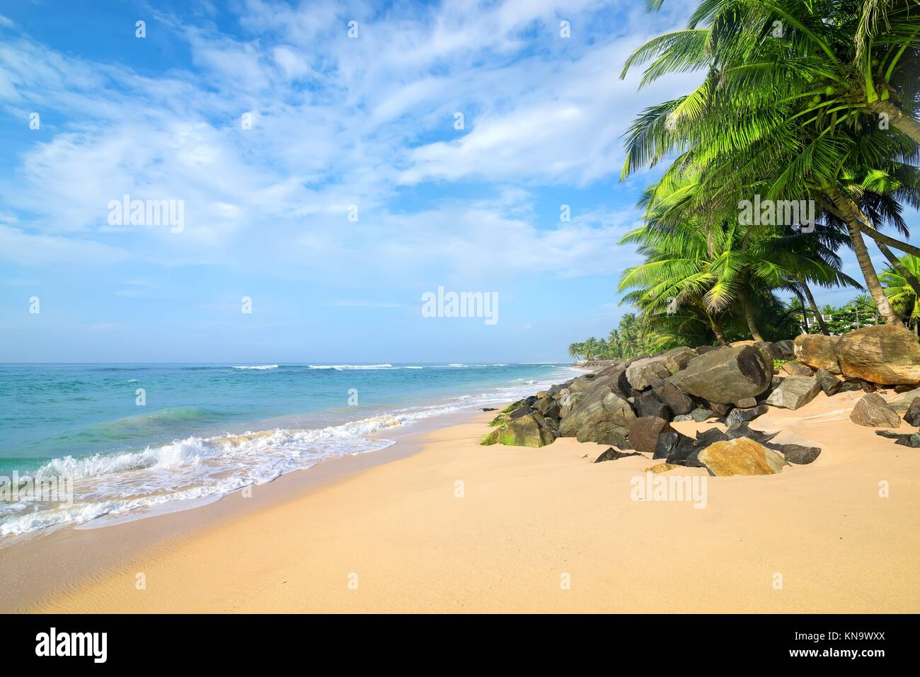 Stones and palm trees on a sandy beach of Gala in Sri Lanka. Stock Photo
