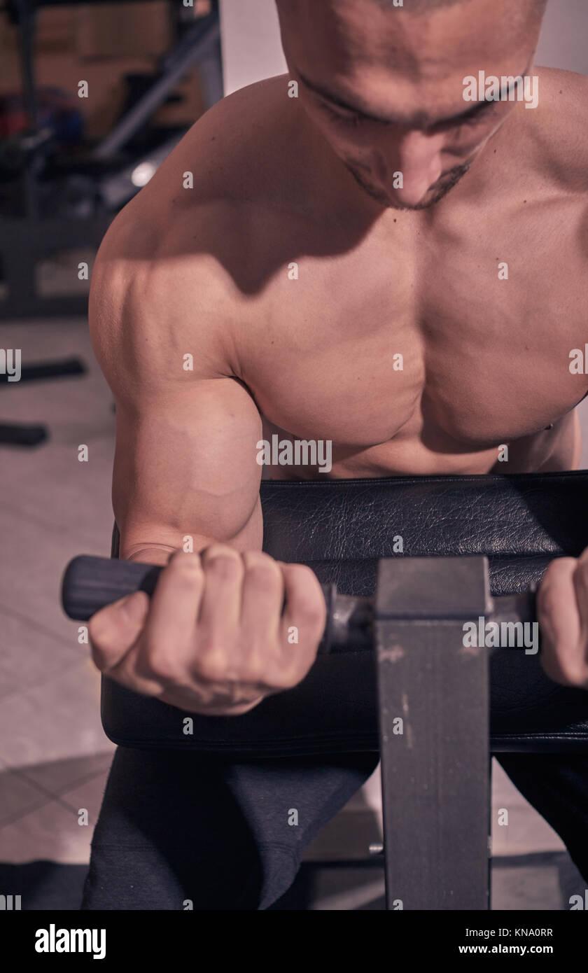 bodybuilder,  bicep curl machine, close up, gym indooors. - Stock Image