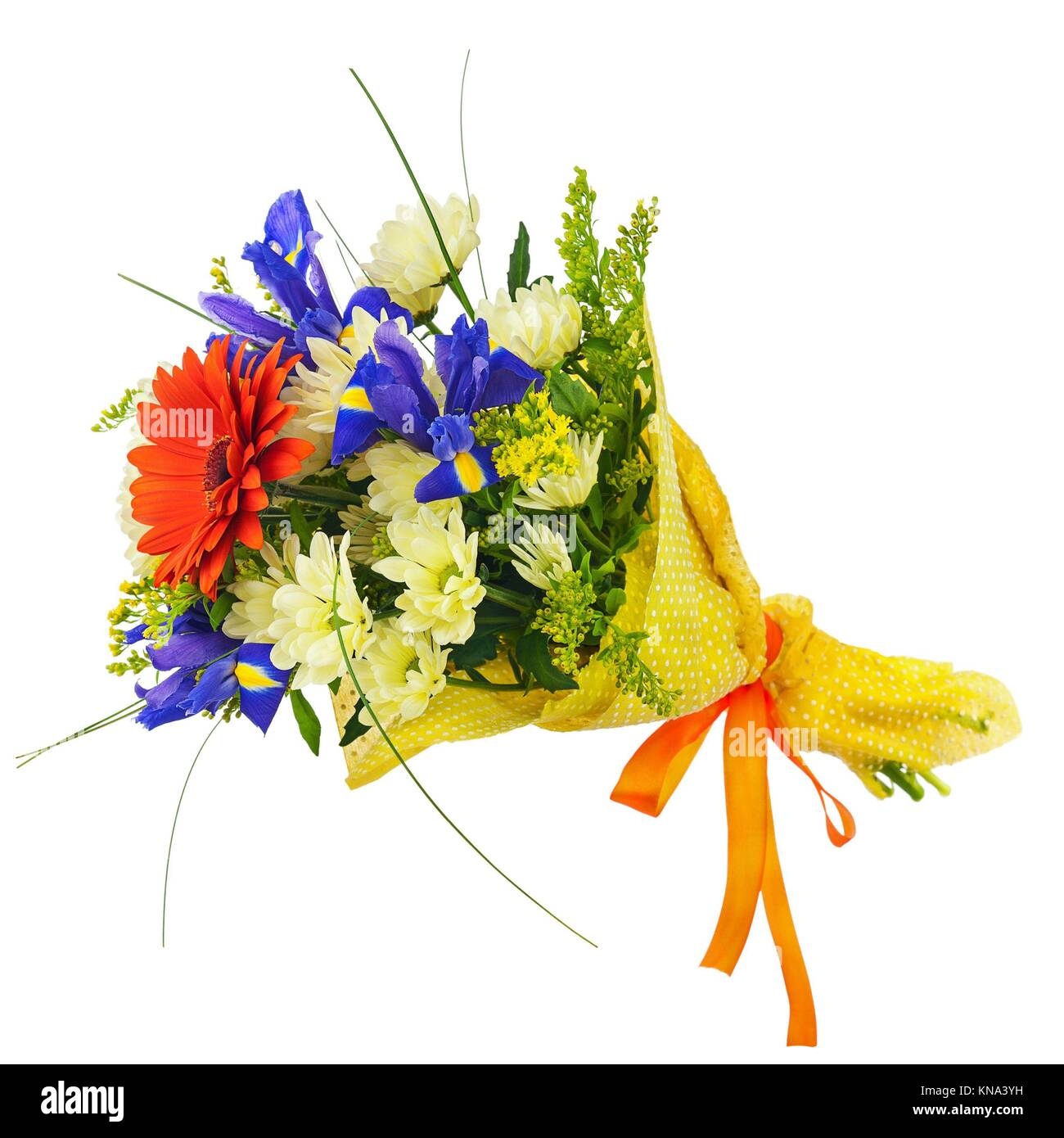 Mazzo Di Fiori Iris.Flower Bouquet From Multi Colored Gerbera Iris And Other Flowers