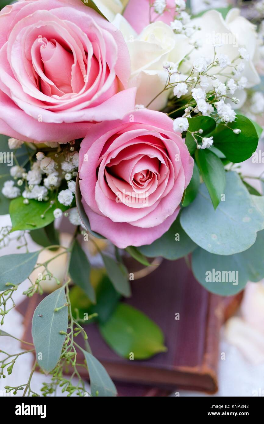 Oregon Wedding Stock Photos & Oregon Wedding Stock Images - Alamy