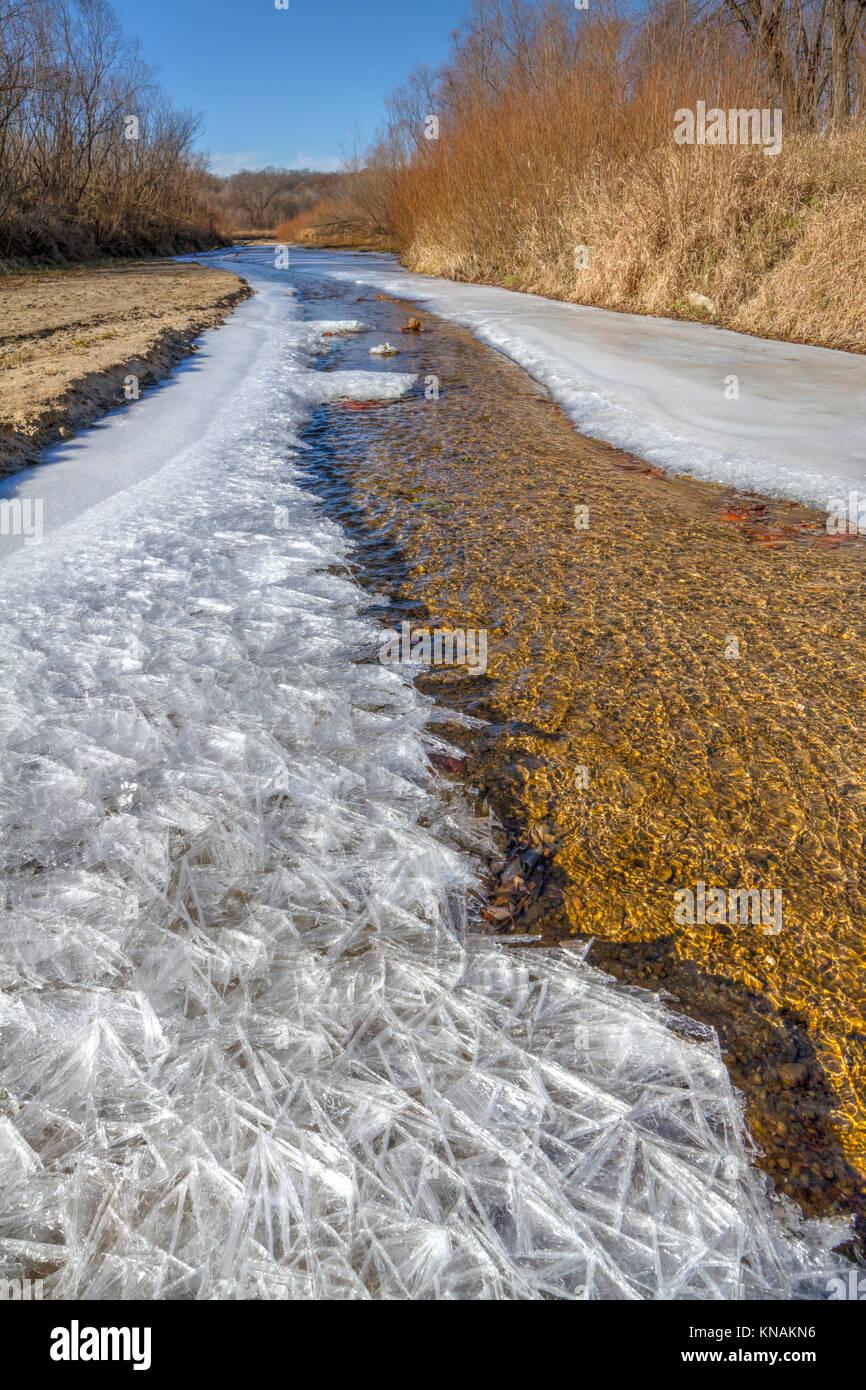 Freezing forest stream at Ledges State Park, Iowa, USA. - Stock Image