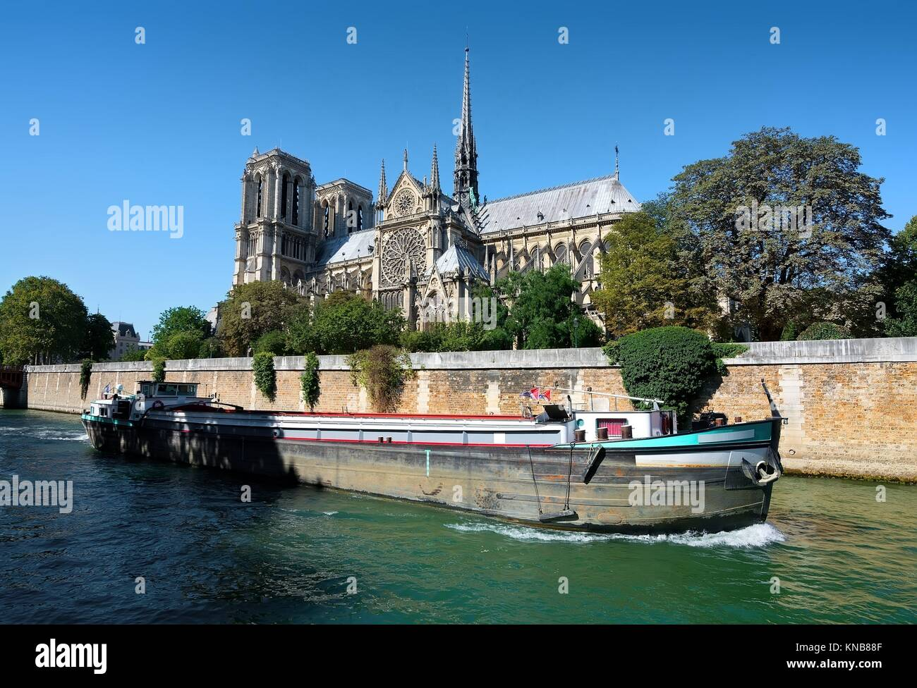 View on Notre Dame de Paris at summer day, France. - Stock Image
