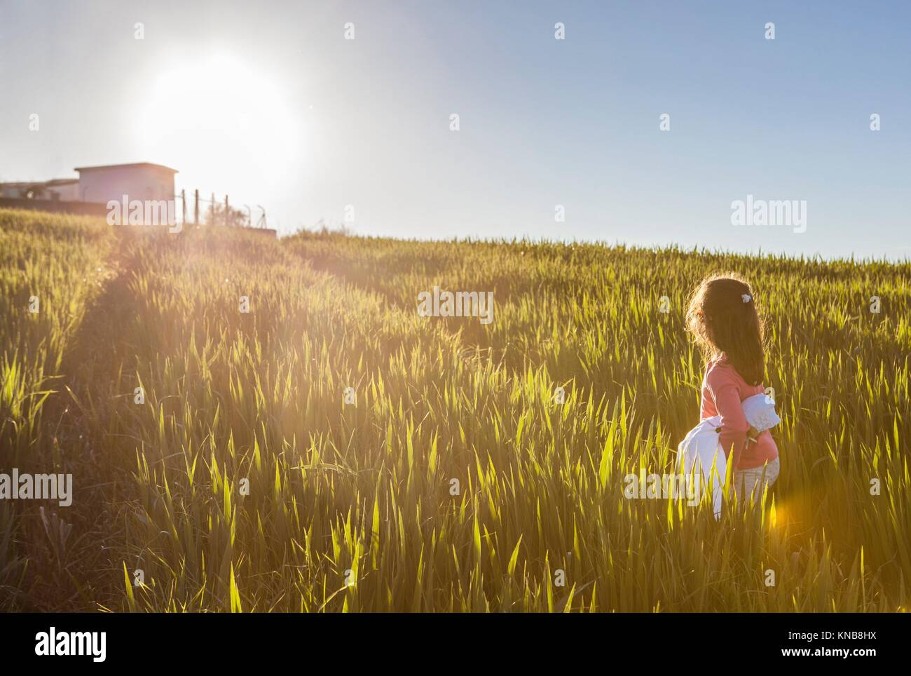 Little girl and her doll walking to the sun through green cereal field. Bravery concept. - Stock Image