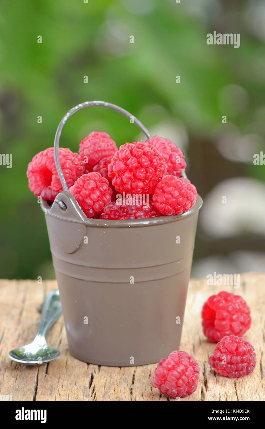 raspberry on old wood shoot in studio. - Stock Image