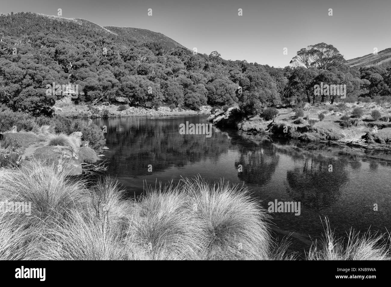 Black and white image of Thredbo River at Thredbo Diggings in Kosciuszko National Park in the Snowy Mountains in - Stock Image