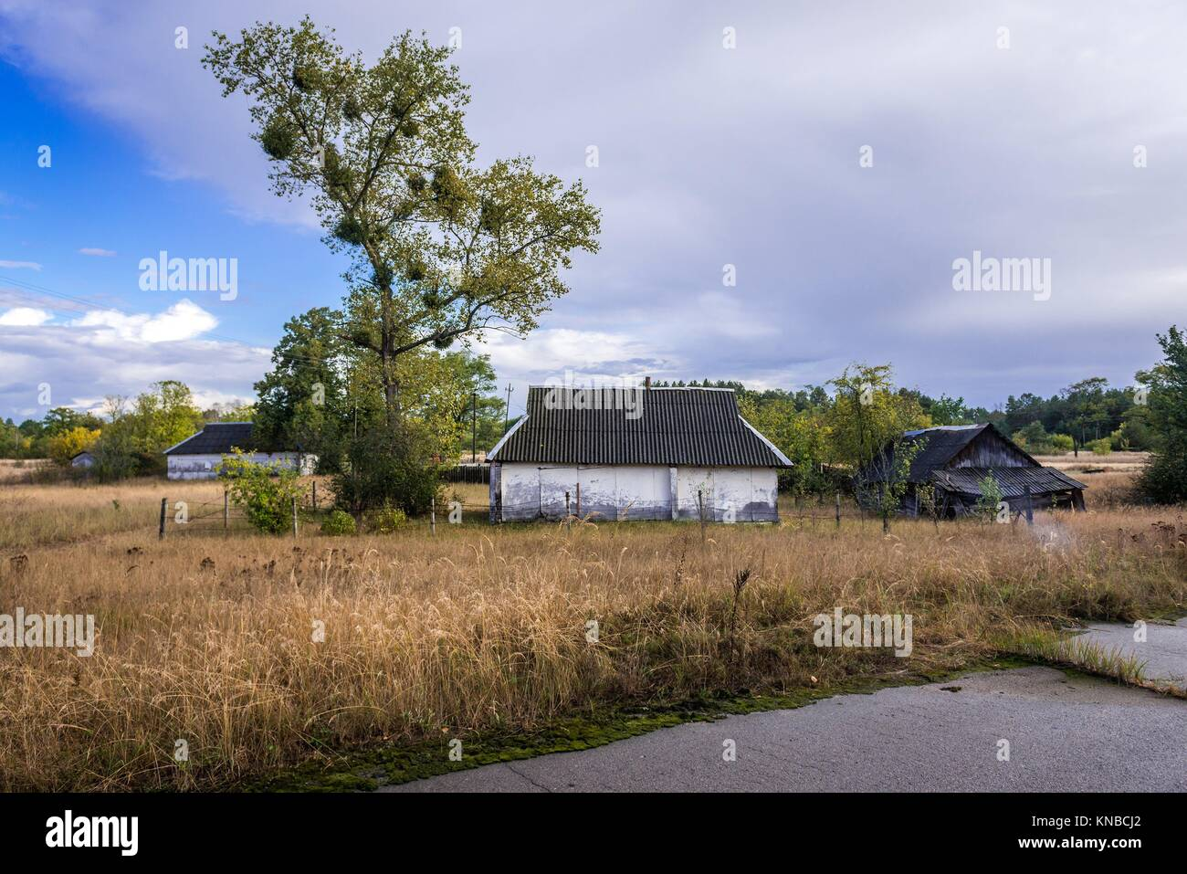 Kupuvate village of Chernobyl Nuclear Power Plant Zone of Alienation around nuclear reactor disaster in Ukraine. - Stock Image