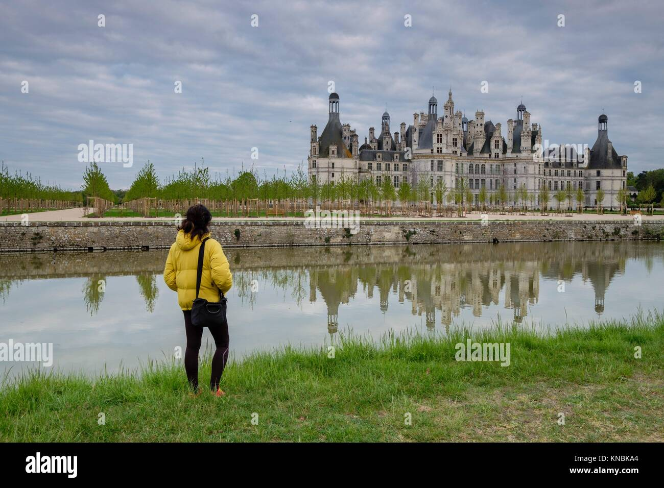 Chambord castle,16th Century, Loire Valley, France,Western Europe. - Stock Image