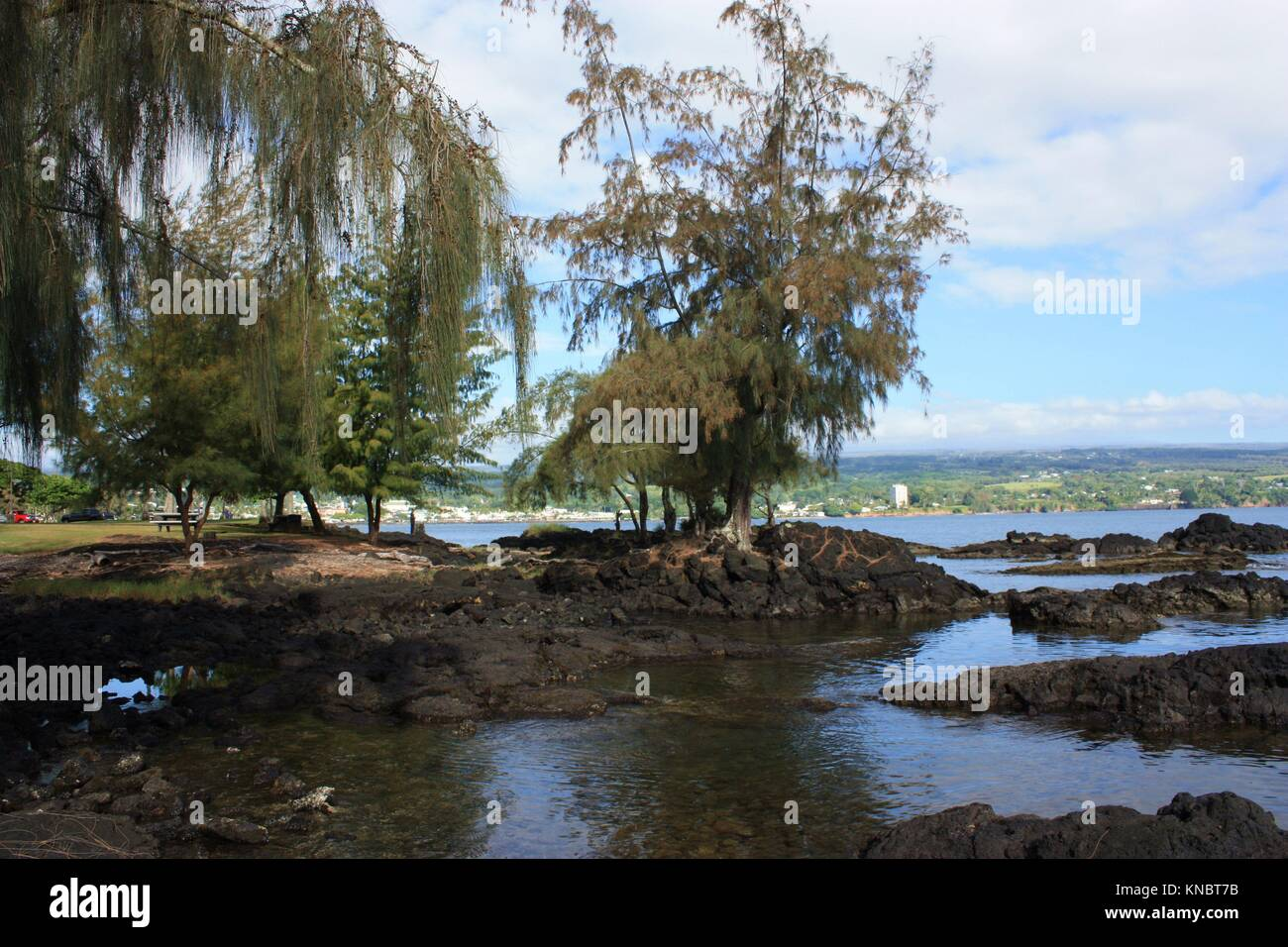 Low tide at a park on Hilo Bay in Hilo, Hawaii. - Stock Image