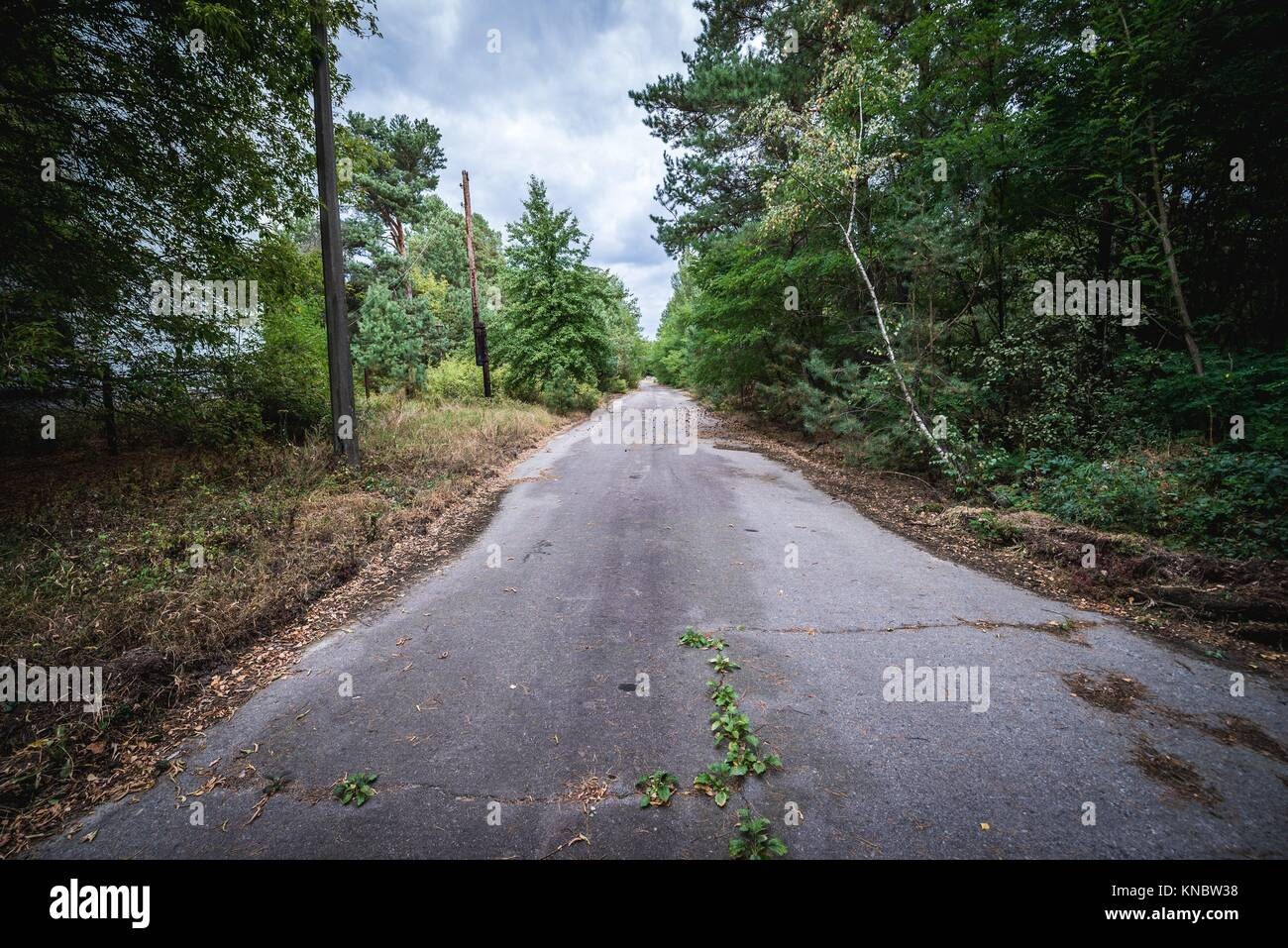 Street in Pripyat ghost city of Chernobyl Nuclear Power Plant Zone of Alienation around nuclear reactor disaster - Stock Image