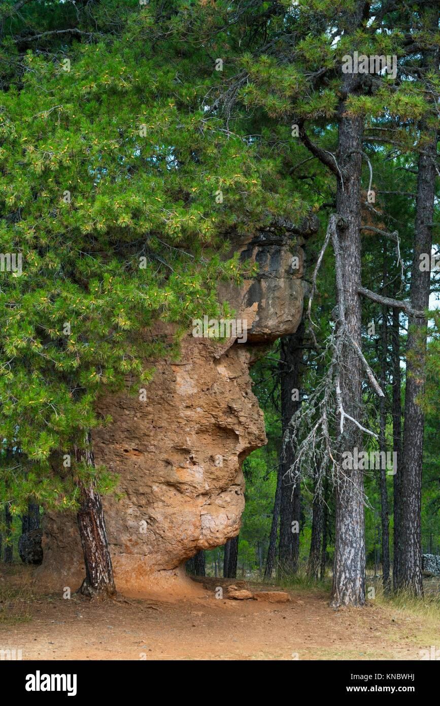 Man's Face, Ciudad Encantada, Serranía de Cuenca Natural Park, Cuenca, Castilla - La Mancha, Spain, Europe. - Stock Image