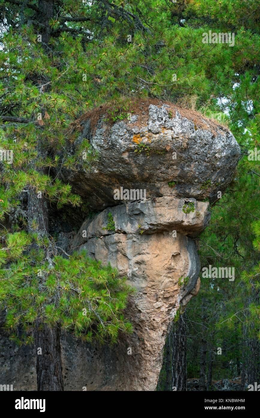 Ciudad Encantada, Serranía de Cuenca Natural Park, Cuenca province, Castile La Mancha, Spain, Europe. - Stock Image